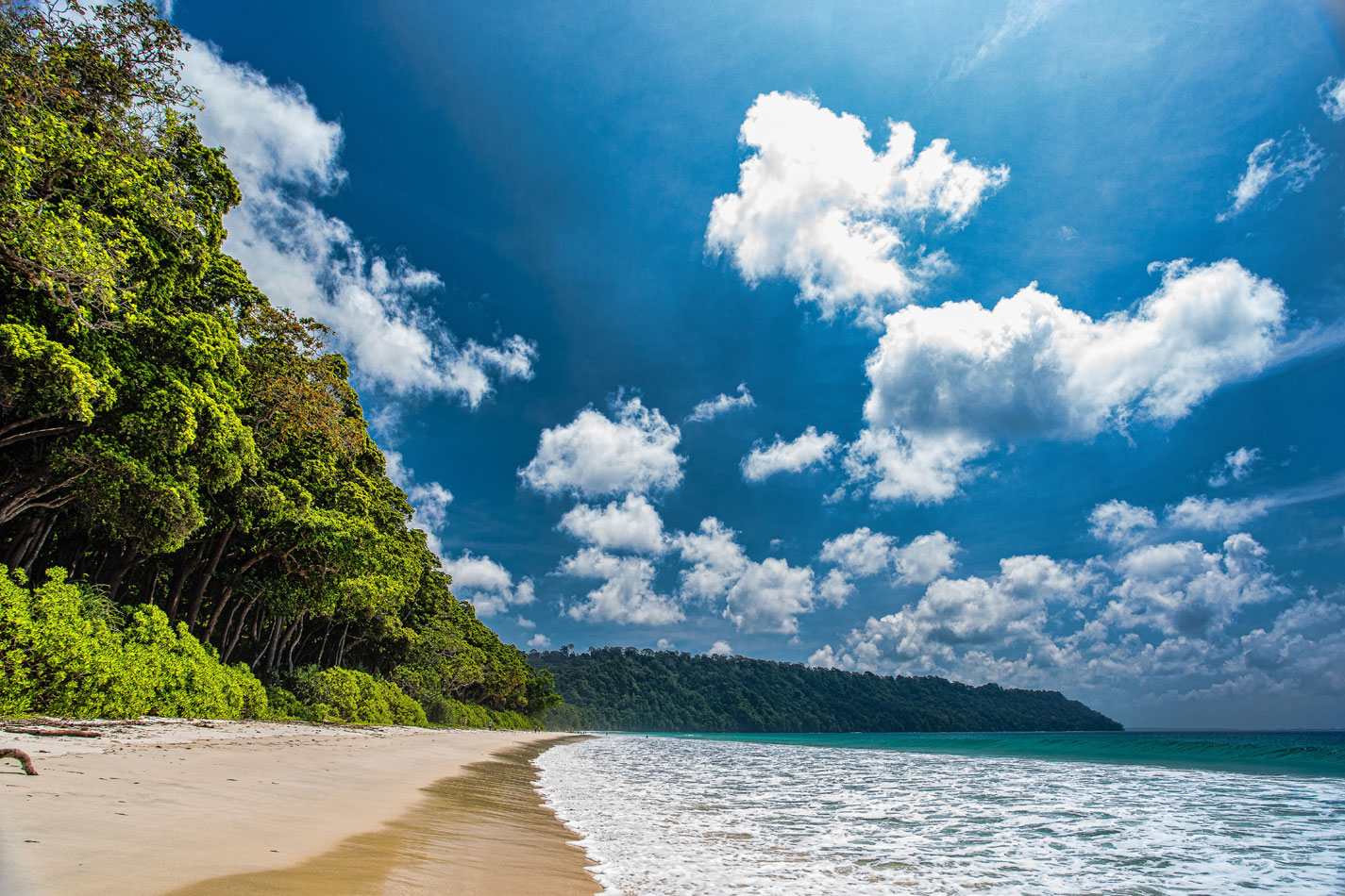 alluring andaman island tour package